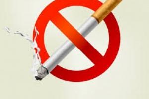 Какой вред несет курение для здоровья